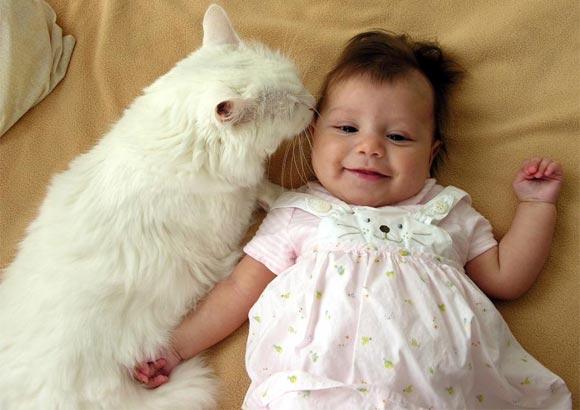 Cat-Baby-Kiss