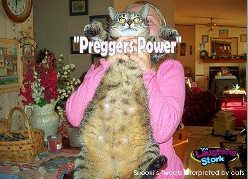 PreggersPower