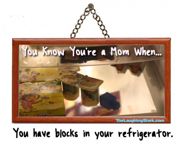 Legos-in-refrigerator